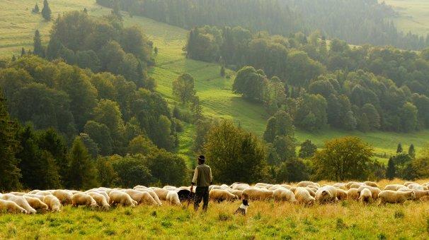 Prečo sa farmári nemôžu spoliehať na Brusel