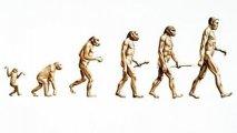 Evolúcia ekonomiky alebo prečo sa socialisti mýlia
